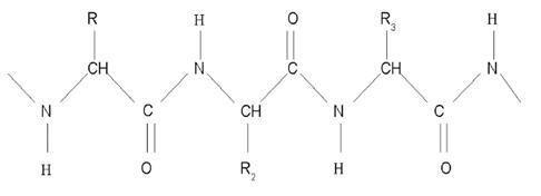 Primarni struktura keratinu